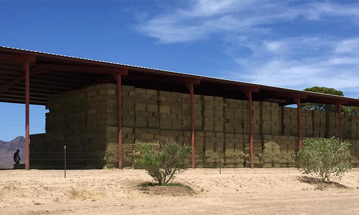 Second Cutting Arizona Alfalfa Hay